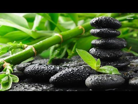 MEDITATION REIKI ZEN ☯ Soulagement du Stress - Musique de Guérison - Purification des Chakras