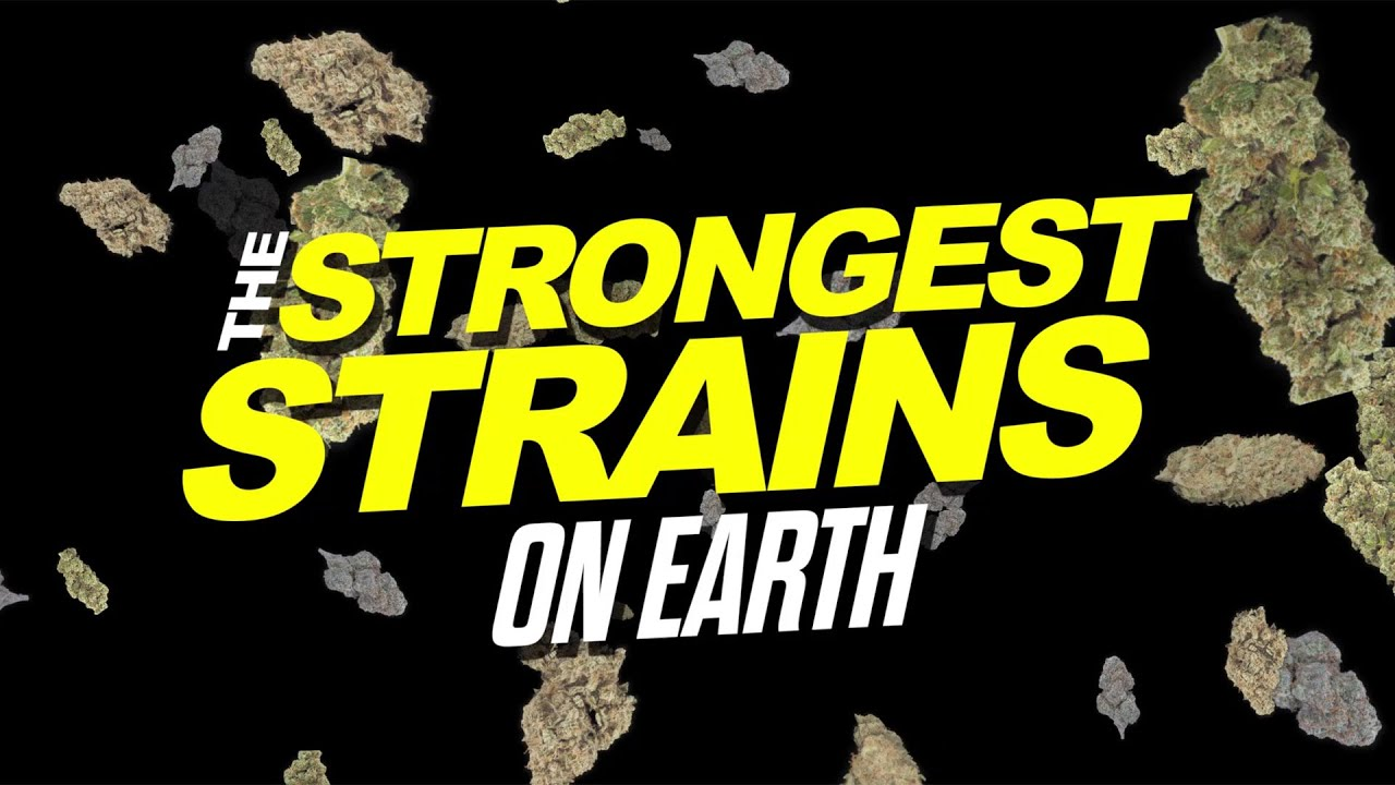 2015 Strongest Strains On Earth