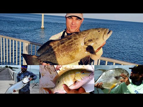 Florida KEYS BRIDGE Fishing, A DAY TO REMEMBER, SNAPPER, TARPON, BLACK GROUPER, PERMIT, CHANNEL 2.