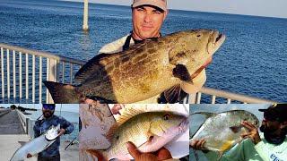 Florida KEYS BRIDGE Fishing, A DAY TO REMEMBER, SNAPPER, TARPON, BLACK GROUPER, PERMIT, CHANNEL 2.