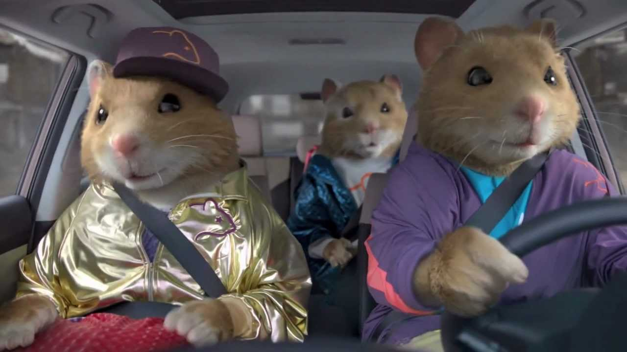 Party Rock Anthem Kia Soul Hamster Commercial Hd Party