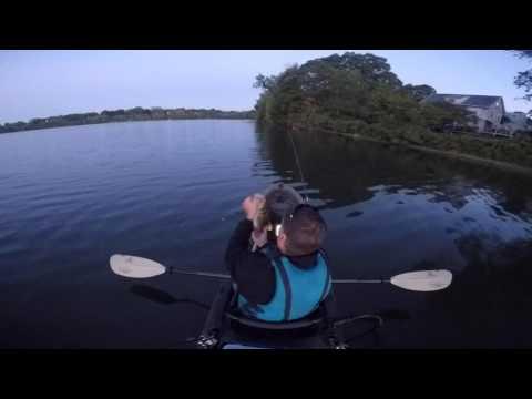 4lb 1oz Bass Spy Pond