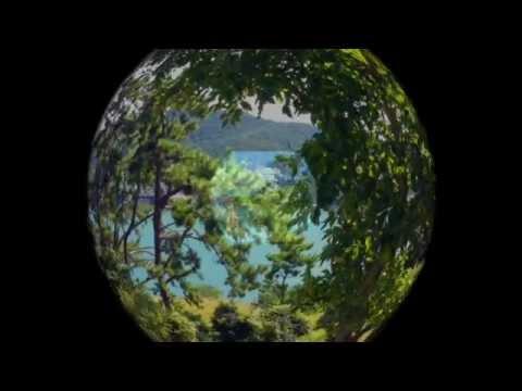 Odongdo Island Day Trip! (오동도)