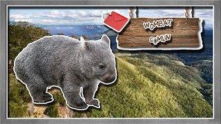 Wombat común | La musculosa excavadora marsupial | (Animales del Mundo) |Petición|