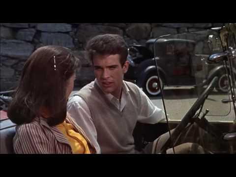 Splendor in the Grass trailer (1961)