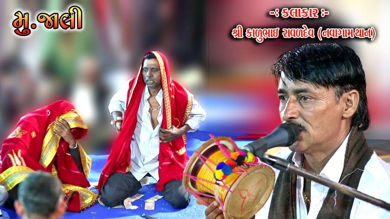 કાળુભાઇ રાવળદેવ નવાગામ થાન વાળા    Kalubhai Ravaldev    મુ.જાલી ગામ    Live in Jali (Vankaner) 06
