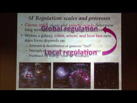 Institute for Advanced Study/Princeton University Joint Astrophysics Colloquium - Eve C. Ostriker