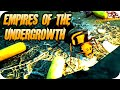 Empires Of The Undergrowth #1 Building Our Formicarium And Tackling First Mission! - EOTU