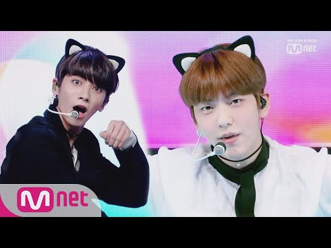 [TOMORROW X TOGETHER - Cat & Dog] KPOP TV Show | M COUNTDOWN 190502 EP.617