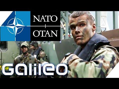 Was macht das Militärbündnis NATO?   Galileo   ProSieben