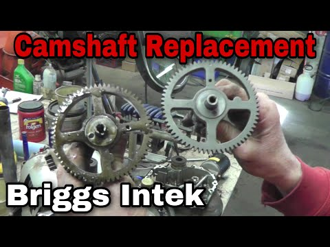 How To Replace A Camshaft On A Briggs & Stratton Intek Engine with Taryl