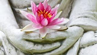 Open gaan voor de diepte in jezelf | Anandajay