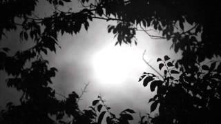 Mike Vandenberg - Spooky (Lemon8