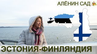 ТАЛЛИН И ХЕЛЬСИНКИ / Как живут в Финляндии / Дороги, люди, цены, язык, продукты