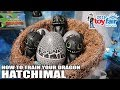 Hatchimals How to Train Your Dragon at Toy Fair 2019