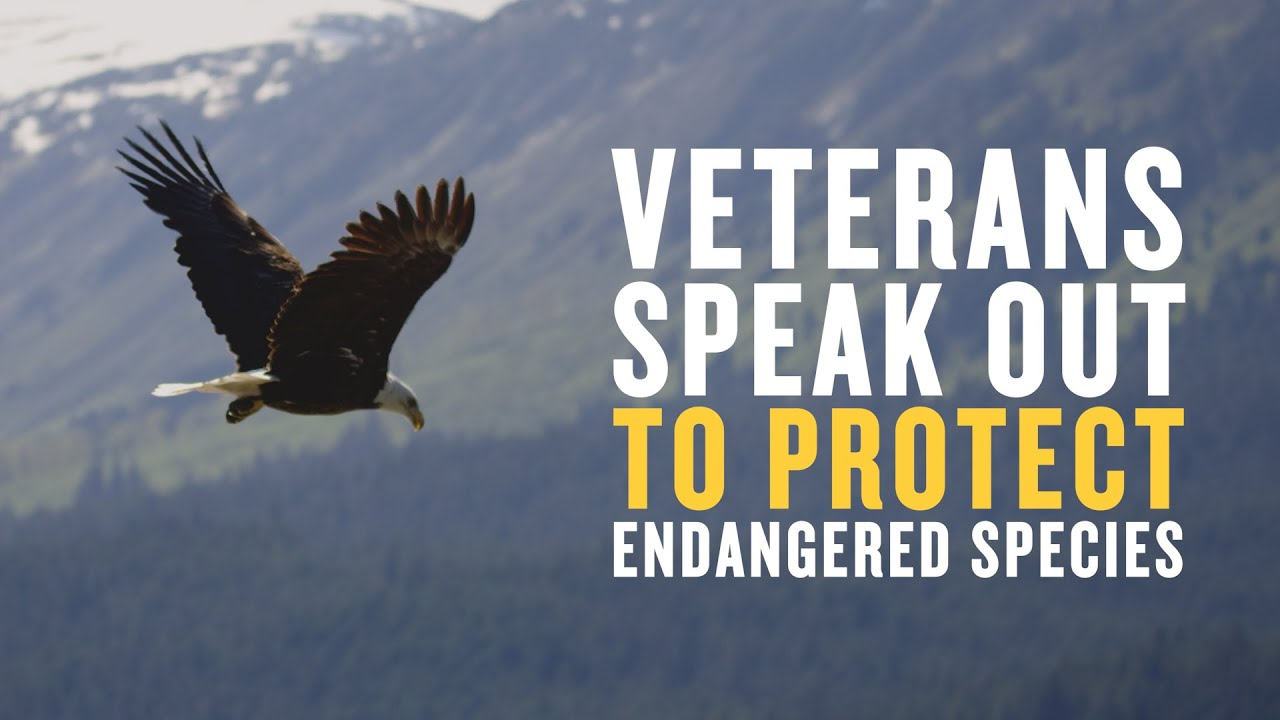 Veterans Speak Out to Protect Endangered Species