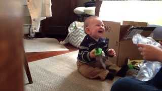 Best Baby Laugh Ever