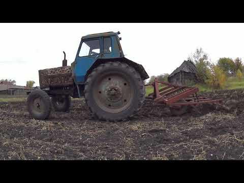 Осенняя КУЛЬТИВАЦИЯ на МТЗ-80!