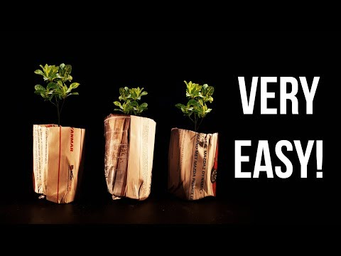DIY Seed Starting Pots 🌱 MAKE EASY NEWSPAPER POT FOR FREE!    Descato Life #4