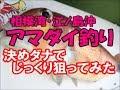 相模湾・江ノ島沖のアマダイ釣り 豊漁丸  Tilefish fishing