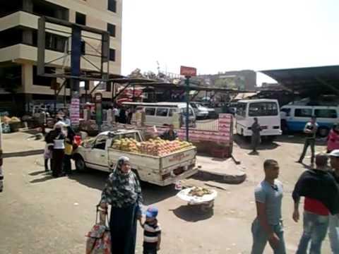 Cairo Free Tour