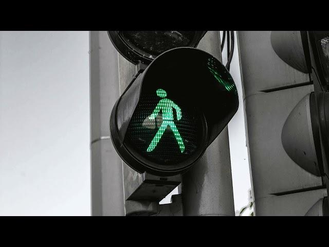 Walking - by Roberto Manzoli