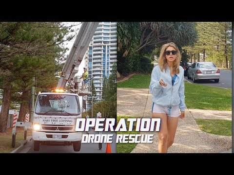 Drone Rescue From A Tall Tree | DJI Mavic Troubleshooting Guide