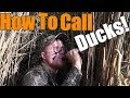 Duck Calling, Learn the Same Way I Did!