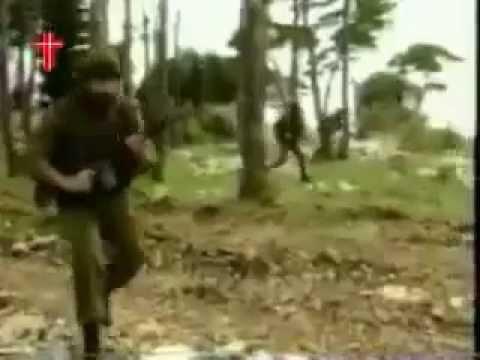 Lebanese Forces Alarm War