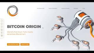 Bitcoin Origin - The Fork Review   World's first Multi-Fork meets serverless Blockchain