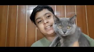 Meet my pet  shadow  vlog 6😇❤️  Insane Abdullah
