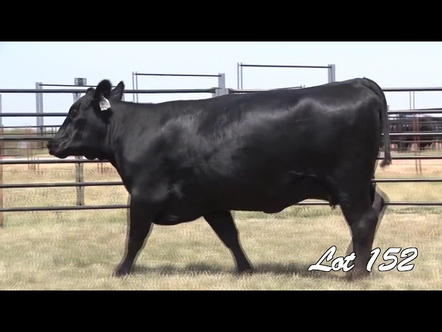 Pollard Farms Lot 152