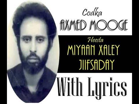 AHMED MOOGE - MIYAAN XALAYTO JIIFSADAY - HEES QARAAMI - HEES QORAN thumbnail