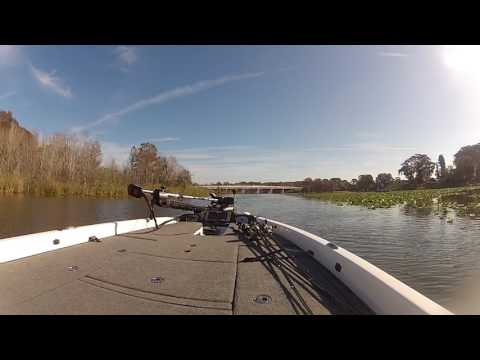 Idling the Dead River - Big Harris to Eustis