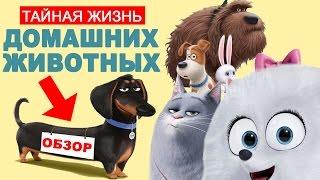 ТАЙНАЯ ЖИЗНЬ ДОМАШНИХ ЖИВОТНЫХ - обзор мультфильма