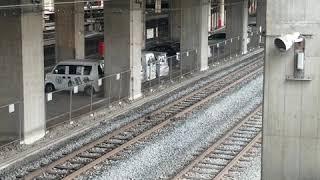 秩父鉄道 パレオエクスプレス 令和記念号