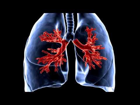 Бросающему курить, что происходит в организме после отказа от курения