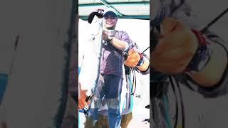 Bak kata Mubinsaat Channel Fish On !!!