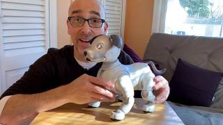 Sony Aibo ERS-1000 Review: It's the Ultimate Robot Dog!