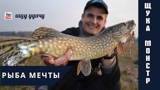 Рыбалка в условиях карантина Словил хорошую щуку в коряжнике Рыбалка с другом на спиннинг