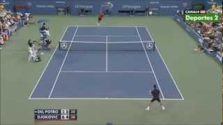 Novak Djokovic crazy defensive skills vs Del Potro (HD)