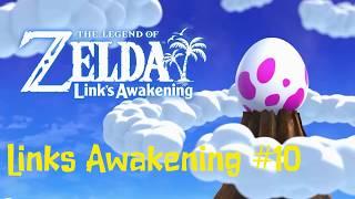 Fenji 4 Link´s Awakening #10