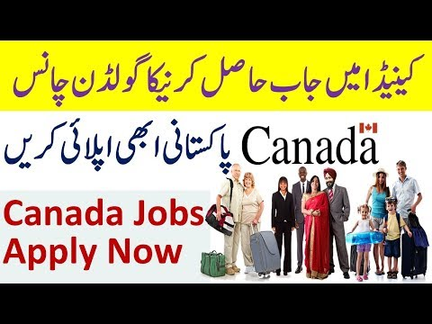 Canada Work Permit Open in New Brunswick Province of Canada - Jobs in Canada Open Hiring Now.
