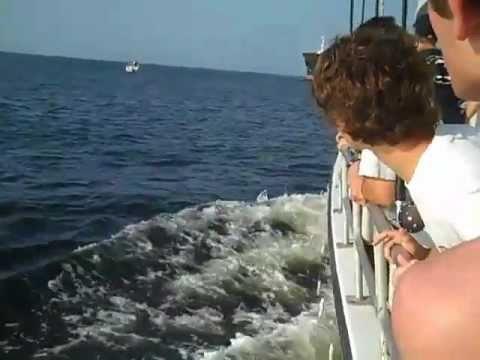 Tanker Near Miss Pleasure Boat
