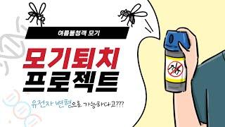 [LMO 불임모기] 모기퇴치 프로젝트_제2기 LMO S…