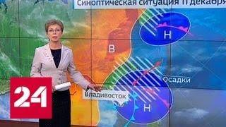 """""""Погода 24"""": в Приморье действует штормовое предупреждение - Россия 24"""