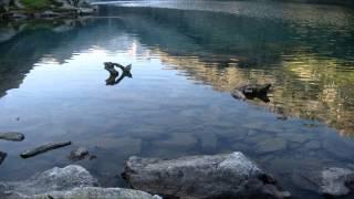 Le Lac de Gaube - Pyrénées (France)