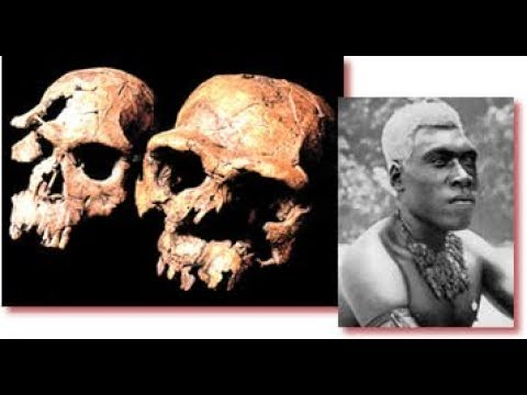 Darwinism Destroyed by Geological Anomalies & Evidence