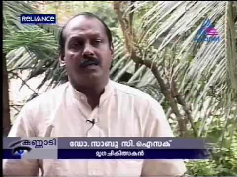 Dr.Sabu.C.Isaac in Kannadi Asianet-Captive  Elephant Mating at kottayam Travel Video