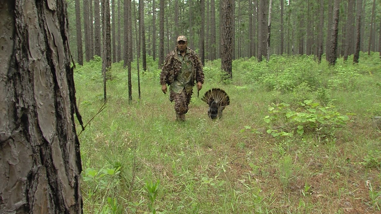 Turkey Hunting East Texas, Game of Gobblers - Texas Parks ...